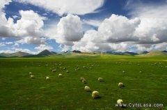羌塘自然保护区