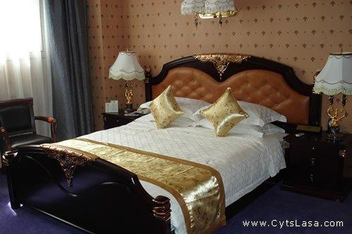 西藏新鼎大酒店